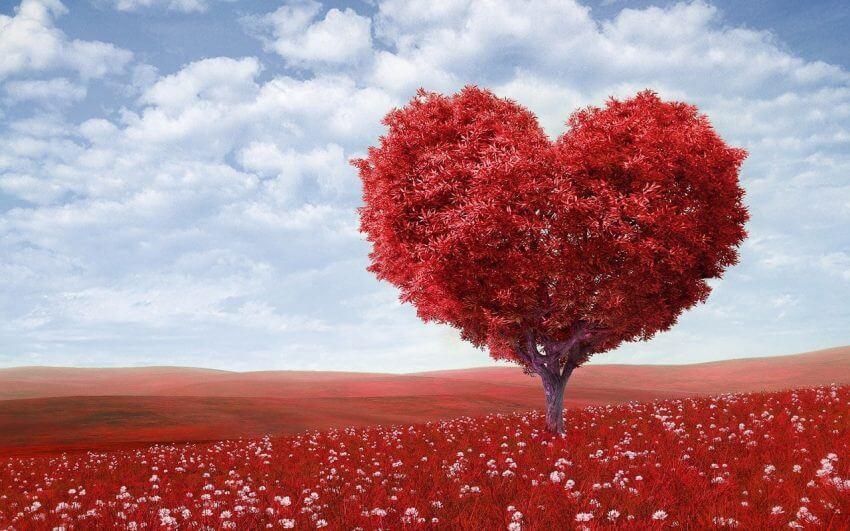 Dejting och kärlek