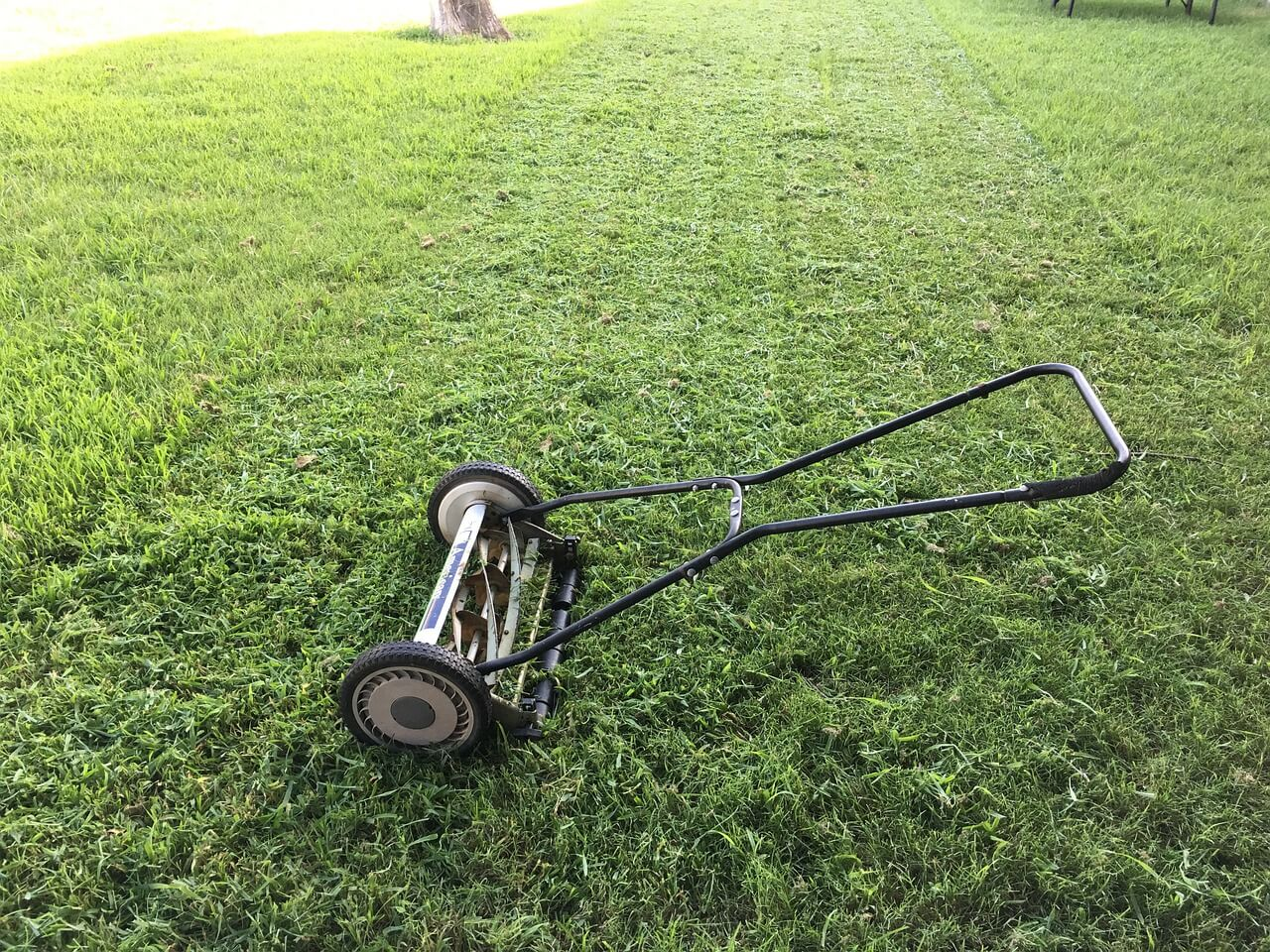 Slut på slitet - nu är det dags för robotgräsklippare!
